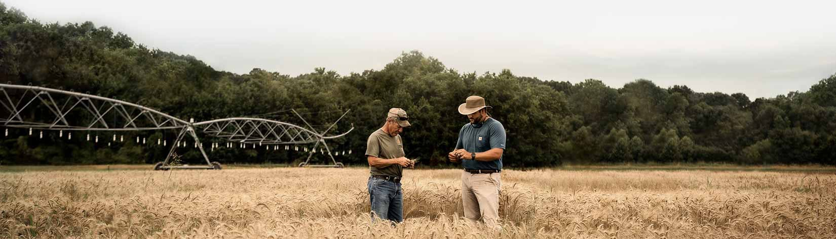 Two farmers standing in a field in front of an irrigation system